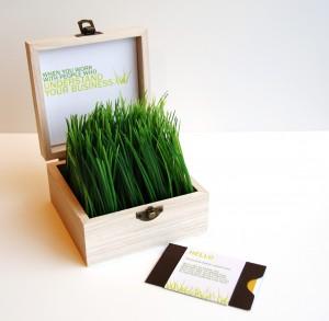 01_grass-300x293-1