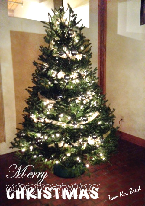 New-Breed-Christmas-Tree