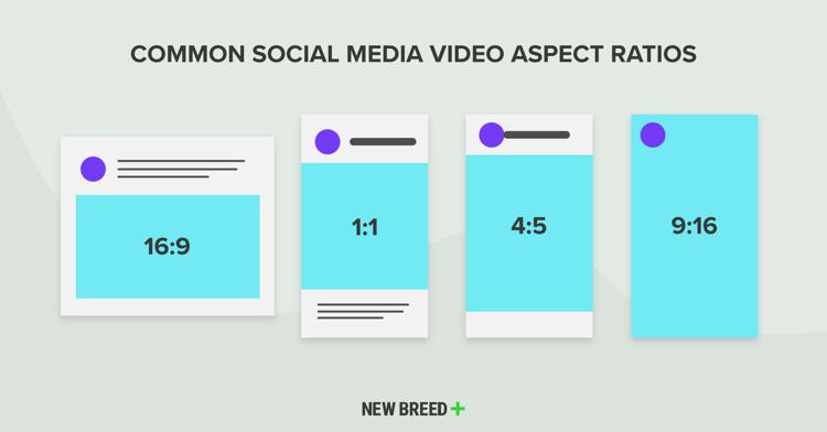 Common Social Media Aspect Ratios
