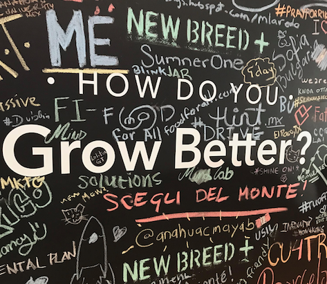 why you should scale your business with the hubspot growth suite