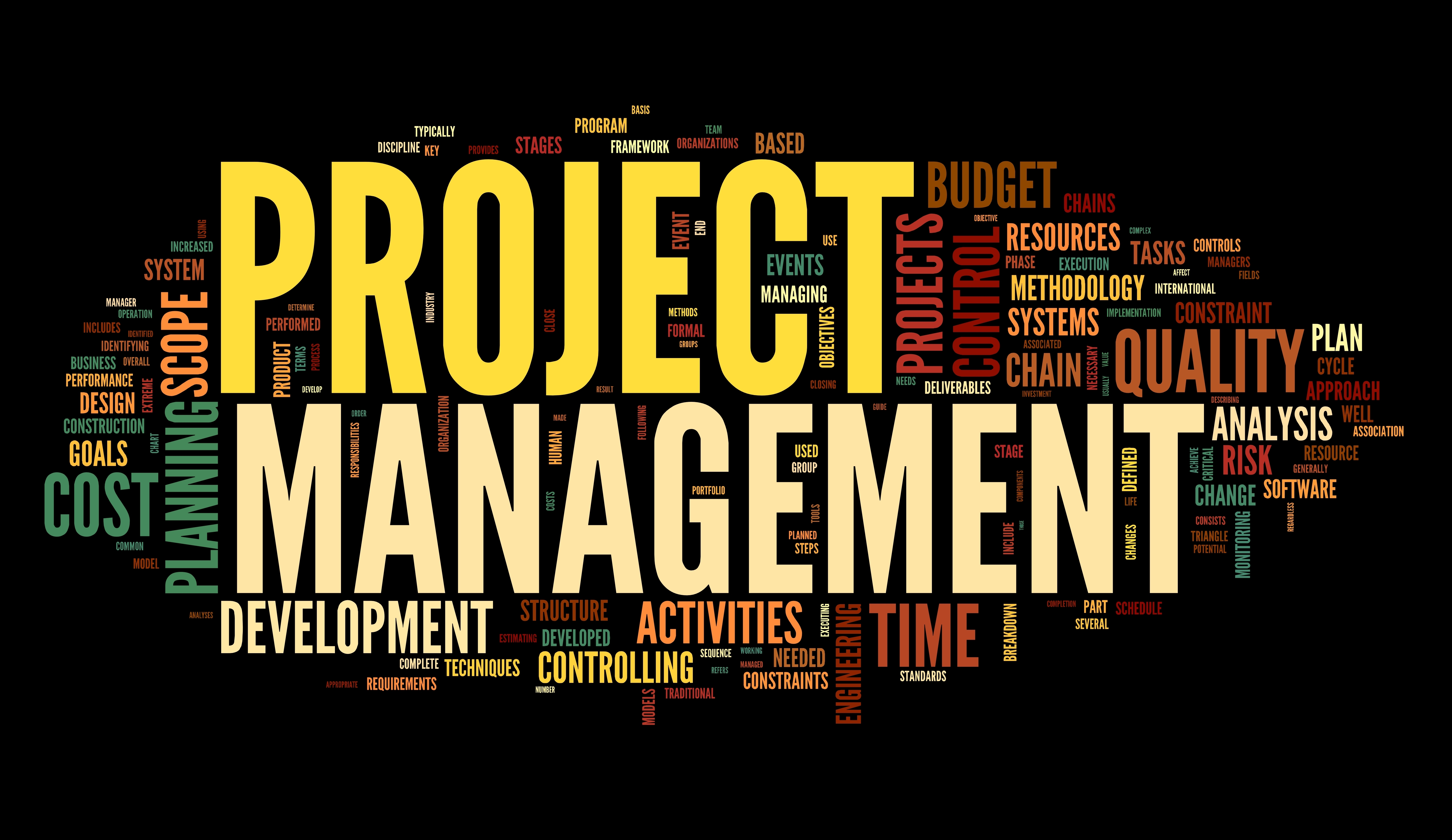 components of a successful project