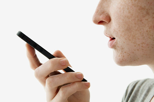 voice search 2