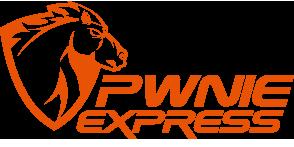 pwnie-logo-FULLCOLOR-1-1